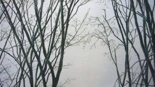 Alice Stephanek & Stephen Maslin - Trees (detail)