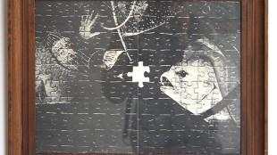 Irene Fortuyn & Robert O'Brien - Missing piece
