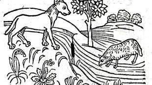 De wolf en het lam