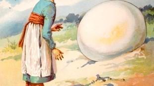 E. Stuart-Hardy - Sindbad de Zeeman