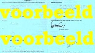 Diploma Nelle Boer