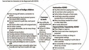 Traits of Indigo Children and ADHD (foto Haiku Deck)