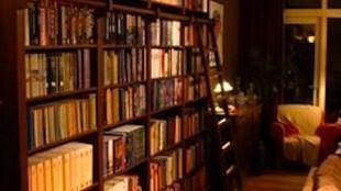 Boekenkast met ladder (foto wortman.nl)