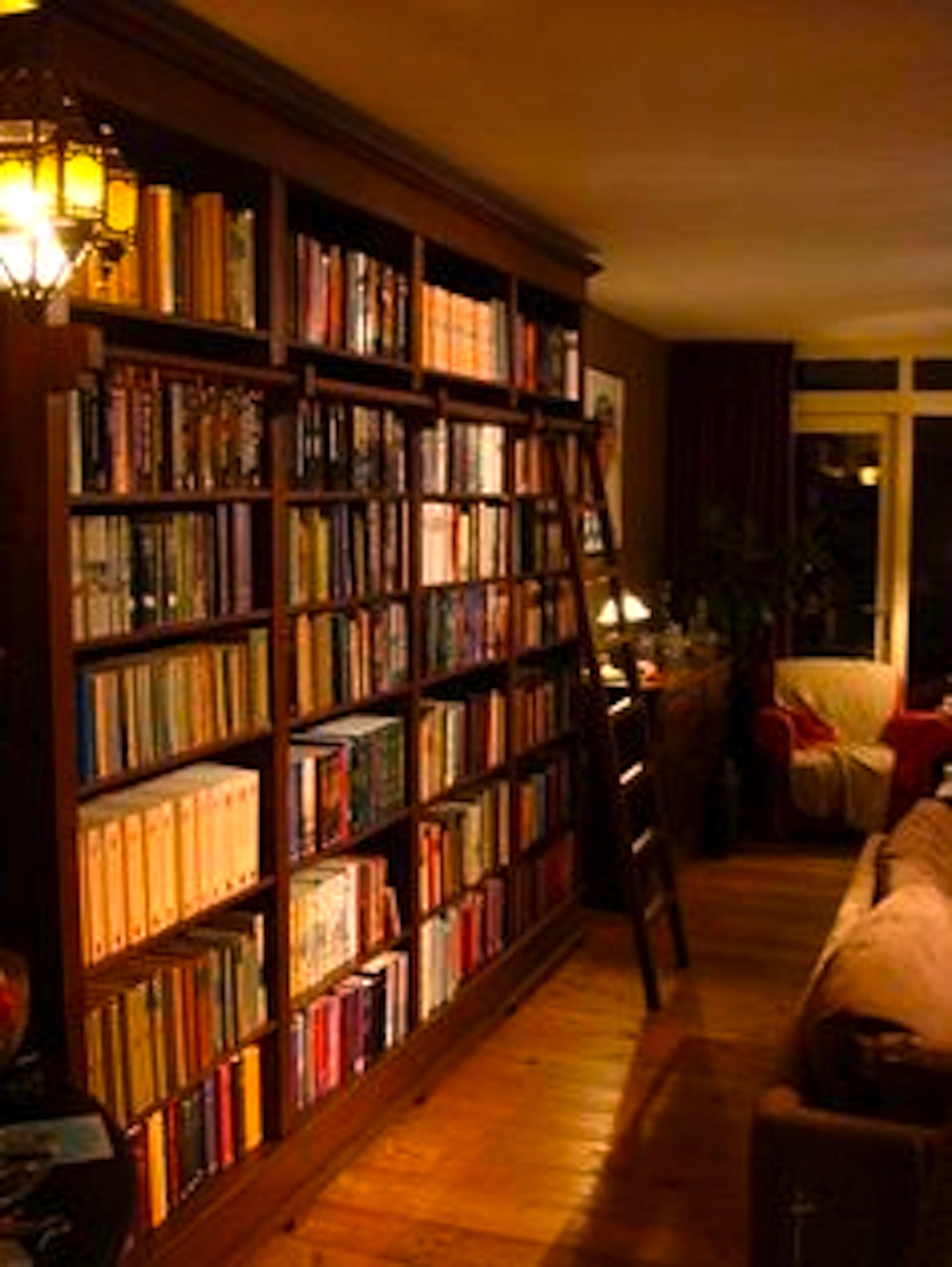 boekenkast met ladder foto wortmannl