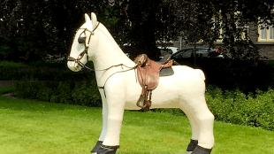 Rob Scholte - Paard voor Willibrordus!