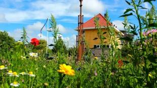 Nieuwe beheerovereenkomst voor het Duinpark (DHA aangeleverd)