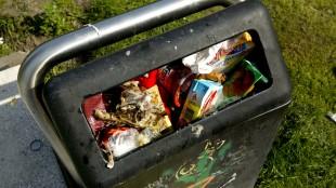 Inwoners Den Helder kunnen afvalbak adopteren (foto RTV NH)