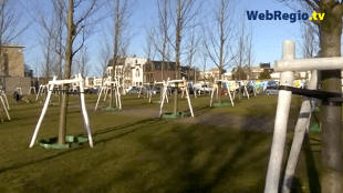Scheve bomen in Den Helder