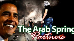 The Arab Spring Partners