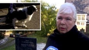 De forse boete, die Lida van de Wint vorige week kreeg, omdat ze haar hondje had meegenomen naar het graf van haar onlangs overleden man, blijft gewoon staan (foto NH)
