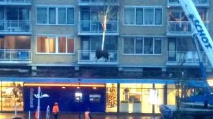 Bomen Middenweg worden verwijderd (foto Lijsje Snijder)
