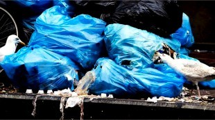 Groot gedeelte van Den Helder staat het hele weekend vol met niet opgehaalde plastic afvalzakken (foto Albertha Postma/Twitter)
