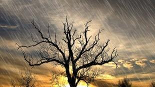 Piova e sol