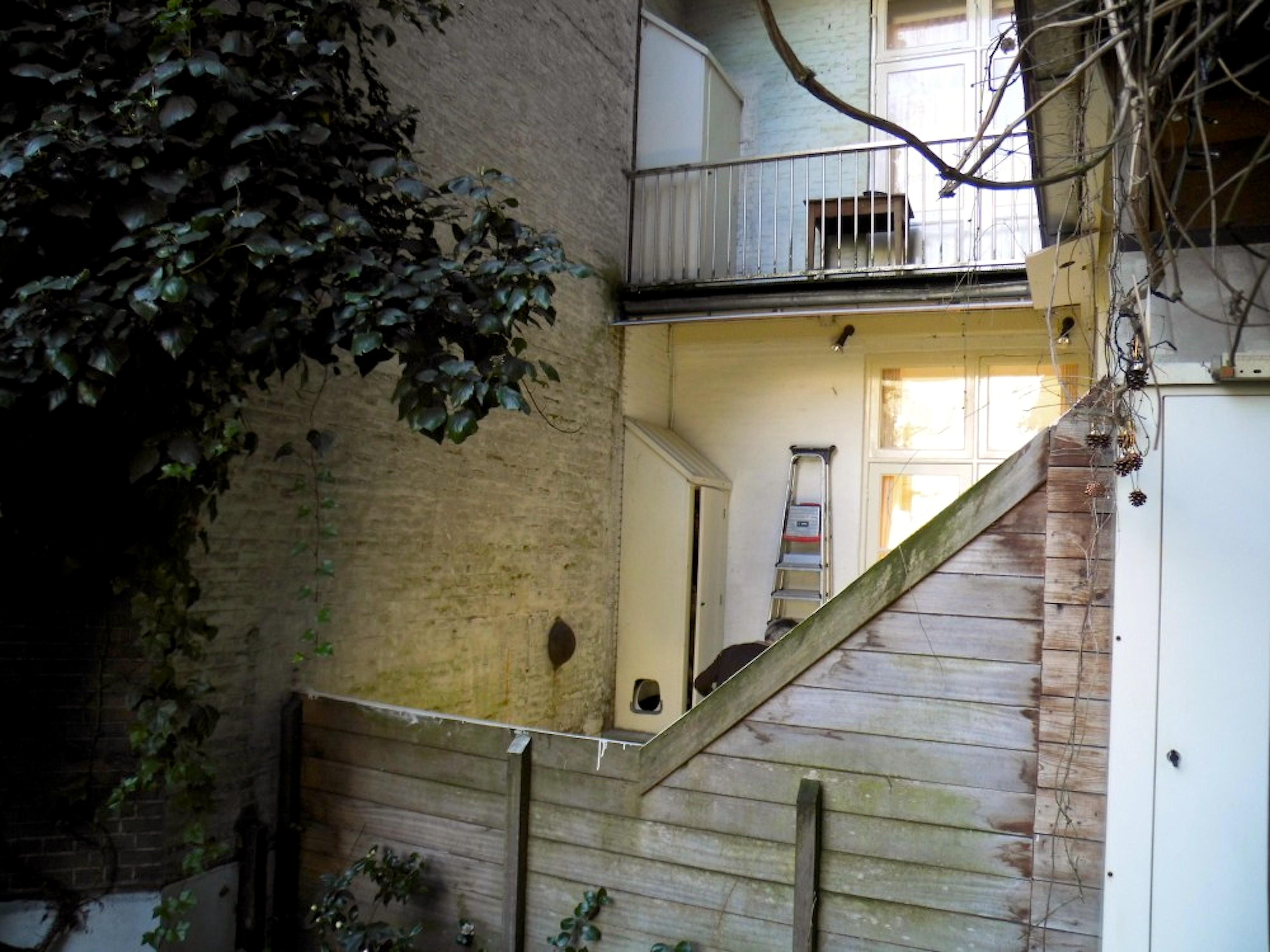 Ladders bij de buurman (foto Maud Oortwijn)