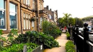 Todmorden, gewoon groente verbouwen op straat (foto de Lange Mars)