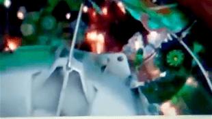 Preview Paradise Bird bij het Rob Scholte Museum (foto YouTube)