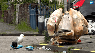 Doffe ellende in Den Helder (foto NH Nieuws)