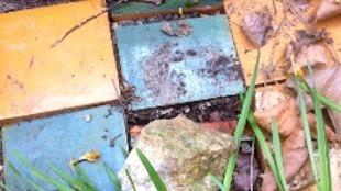 Detail van het graf van Erich Wichman met tegeltjes en bordje met Verlierbaren Lebenden Unverlierbaren Toten op begraafplaats Zorgvlied, Amsterdam, veld 1.5, N III 1007 (foto Nederlandse Poëzie Encyclopedie)