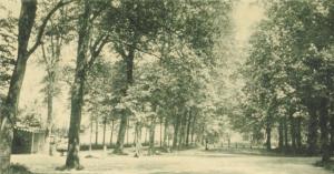 Harddraverslaan:Wilhelminalaan 1899 in de Alkmaarder Hout (Archief NDR)