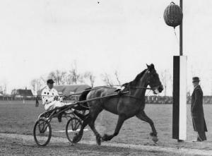 Lady Heny met Frits Bosveld op Alkmaar 10 april 1949 (Archief NDR)