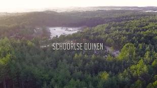 Schoorlse Duinen (foto YouTube)