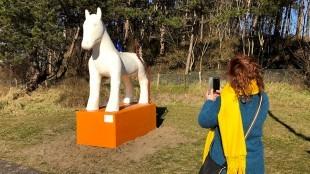 Hellen van Meene fotografeert haar omstreden Egmonds kunstpaard op de oude plek (foto NH Nieuws/Anne Klijnstra)
