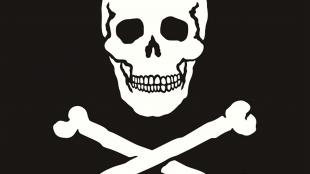 Skull With Crossbones (foto TeePublic)