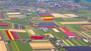 Stadshart op koers (foto Woningstichting Den Helder)