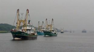 Boze vissers stomen op naar Amsterdam (foto L.O.S. Den Helder)