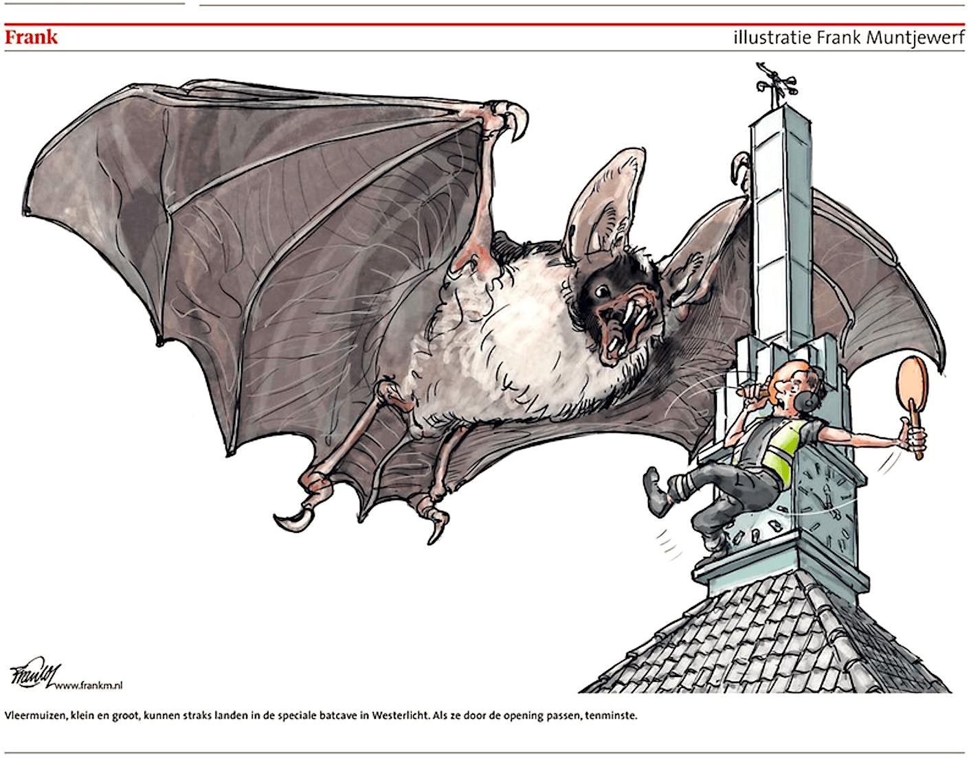 Frank Muntjewerf - Vleermuizen
