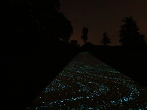 Van Gogh Fietspad wandelen over de sterrennacht
