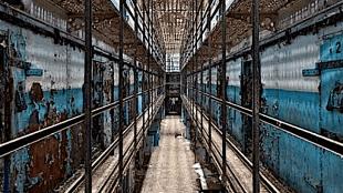 Kees Sluys - Herman Bianchi en zijn levenslange strijd voor gerechtigheid