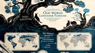 Stamboom van talen (foto De Bicker)