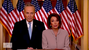 The Chuck and Nancy Puppet Show