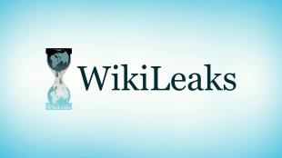 Wikileaks (foto Know your meme)