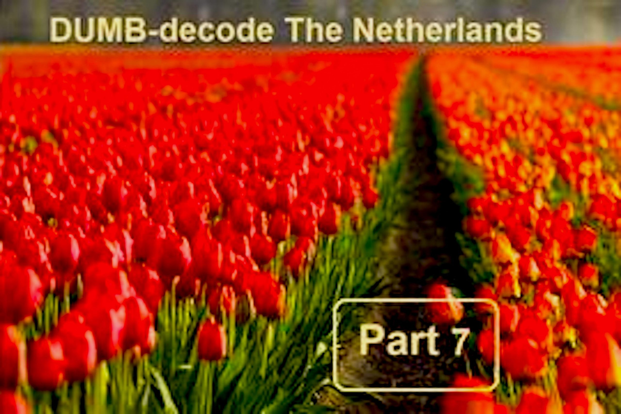 Blessed To Teach | B2T Show – Gene Decode! The Netherlands Underground Bases (7) Update, June 10, 2021